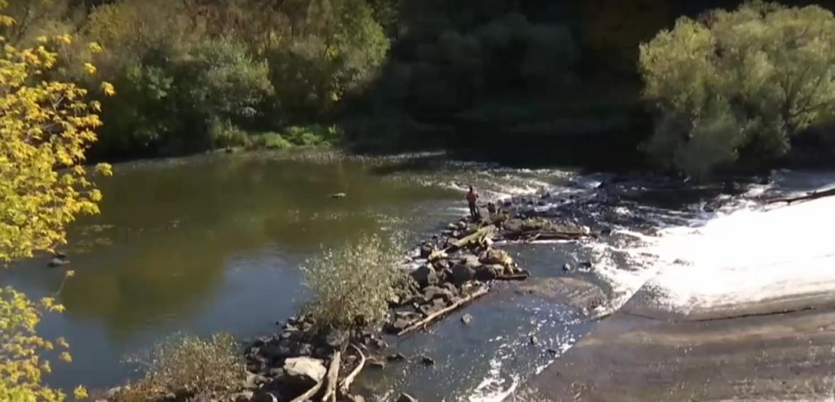 В Житомире из-за аварии канализационные стоки хлынули в реку Тетерев / скриншот