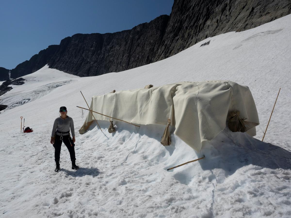 Шведські екологи знайшли спосіб врятувати льодовики / фото REUTERS