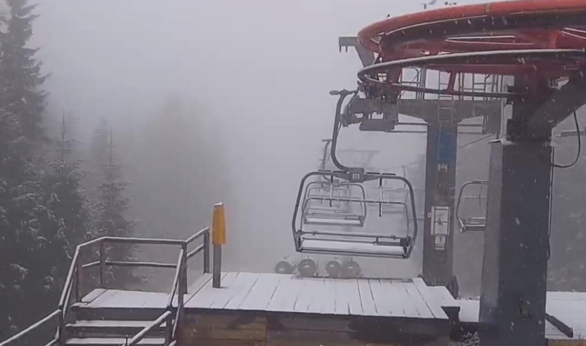 В Карпатах идет снег / скриншот видео
