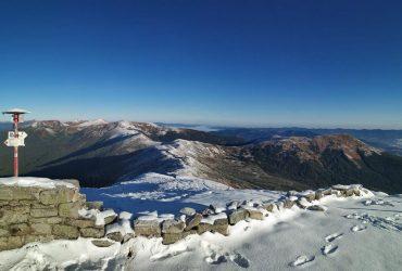 В сети показали сказочные Карпаты в снегу (фото)